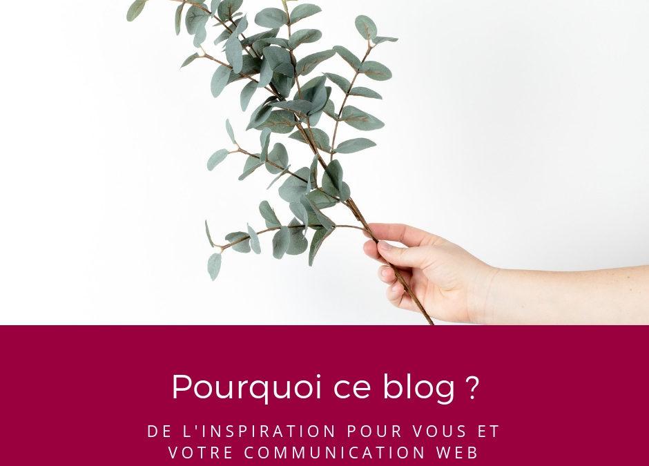 Pourquoi ce blog ?